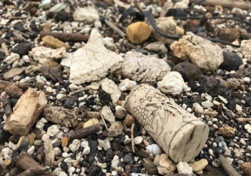 2018 Bewustwording milieuproblematiek